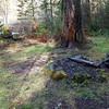 Campsite next to Fish Creek