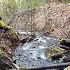 Most recent Rimrock creek washout