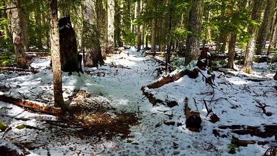 """MP3 Junction with Rimrock trail - 2-3"""" of snow at 4200'"""