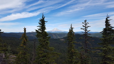 Mt Hood from the Rimrock trail overlook