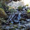 Thorton Creek tributary crossing on Thornton Lake trail