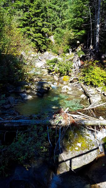 Thorton Creek