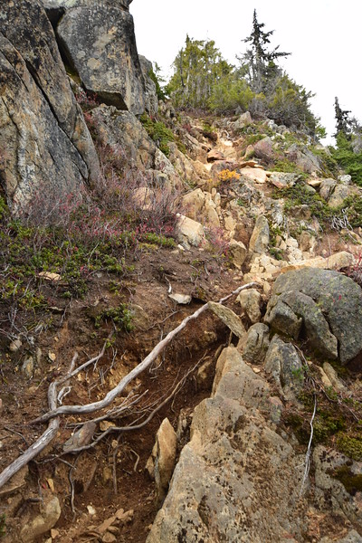 The steep, rough way up to the top of Trapper Peak