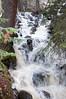 20160521_RMNP Onahu Creek_059-1_edited-1