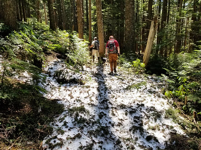 One of the larger snow patches we found on the Old Baldy trail