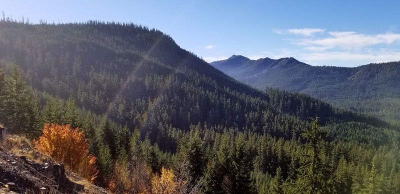Looking down into Pansy Creek drainage from 6340 road