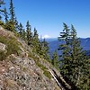 Mt Hood from Bull of the Woods trail (550)