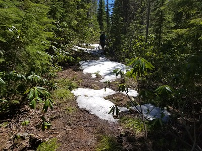The first sign of snow on the Burnt Granite trail - about 4500' or so
