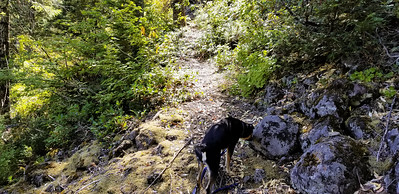 Corral Springs trail farther uphill - near rockslide area