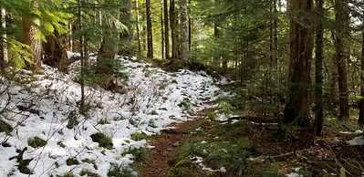 Start of the trail - not much snow