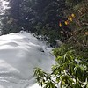 """Getting out into open areas near Squaw Mountain - snow is getting really deep -18"""" +"""