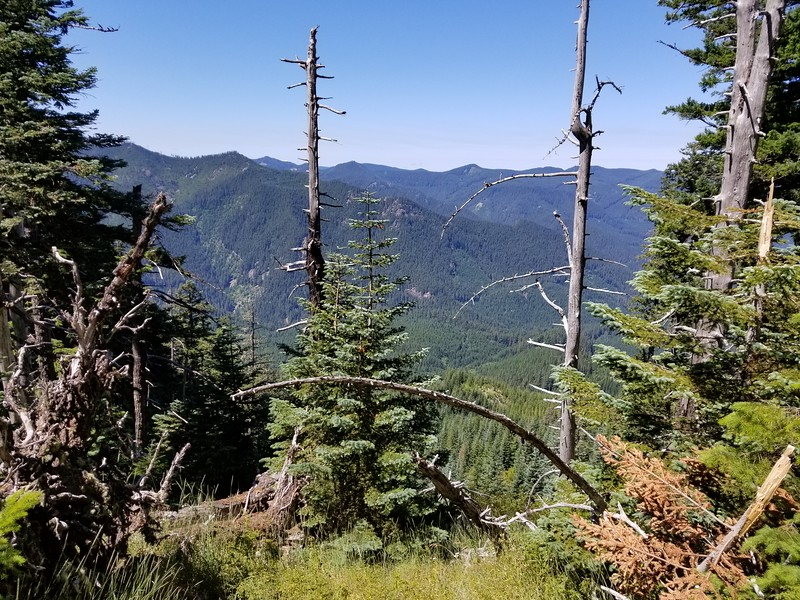 View from Fish Creek Mountain trail