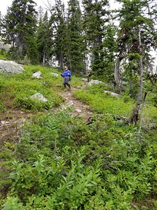 """Coming down from Delta Lake - this was the """"ultra steep"""" section"""