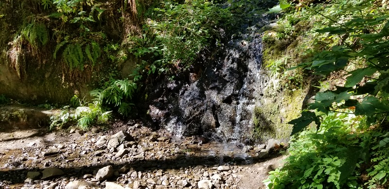 Cool little waterfall on Oneota trail