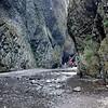 Oneota Creek Canyon