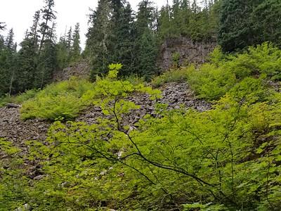 Rockslide on trail down to Plaza Lake