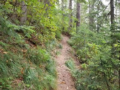 Plaza Lake Trail