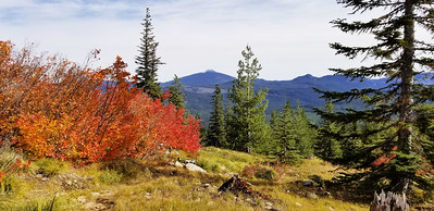 Olallie Butte with the fall colors - Rho Ridge Trail