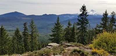 Mt Jefferson and Olallie Butte from Hawk Mountain