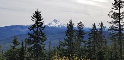 Mt Jefferson from Hawk Mountain