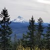 Mt Jefferson from Hawk Mountain