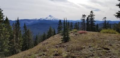 Mt Jefferson from Hawk Mountain - Rho Ridge Trail