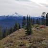 Mt Jefferson from Hawk Mountain - Rho Ridge Trail