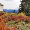 Cabin on Hawk Mountain with the fall colors in the foreground and Mt Jefferson in the background