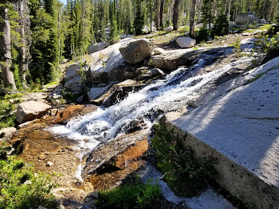 More water cascades on the trail - This was the first crossing of the creek on the way up to Edith Lake