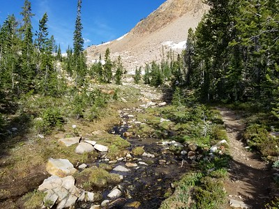 Continuing up to the Imogene Lake trail junction