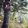 Trail sign at top of south fork Mountain trail - heading down to Memaloose Lake