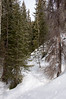 20170218_RMNP - Baker Gulch snowshoeing_013_edited-1