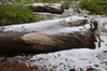 20170916_Jim Creek_090