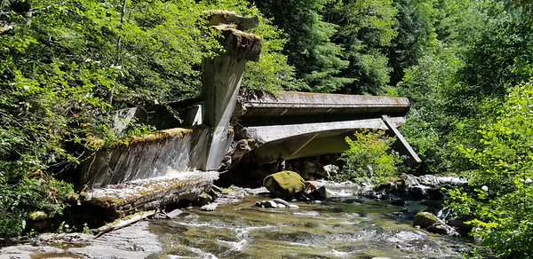 "The ""Apocalypse Bridge"" - Overturned bridge near Coffee Creek on Wash Creek"