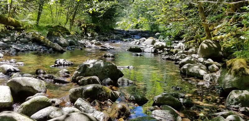 Wash Creek near where Pick creek meets it - very tranquil