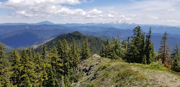 Mt Jefferson hiding in the clouds - Olallie Butte to the left.  From the Bull of the woods lookout