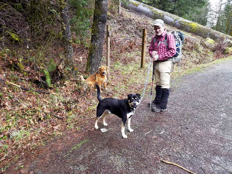 """Thor, Ollie and I at the Cripple Creek trailhead - you can see the """"big pipe"""" that goes to Three Lynx power station in the background."""
