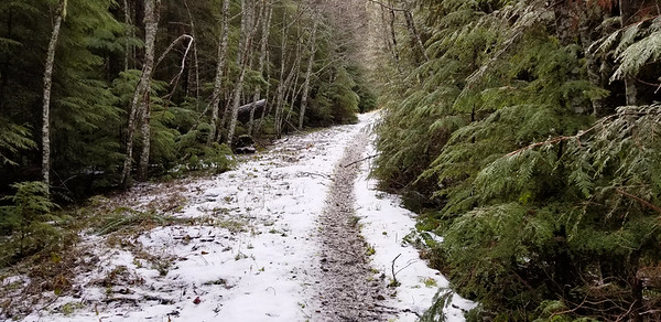 The decommed road (the new trail) at the beginning had some crusty snow on it.