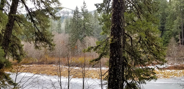 Small lake in flat spot on Dickey Creek Trail - un named - Snow on the peak across the valley