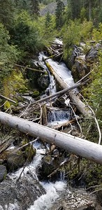 One of the many pretty creeks along the East Fork Wallowa river