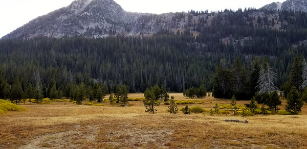 Opening up into our first meadow - unnamed mountain in the distance