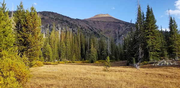Meadow along East Fork Wallowa river trail