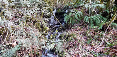 Intresting side creek crossing - along 54 road