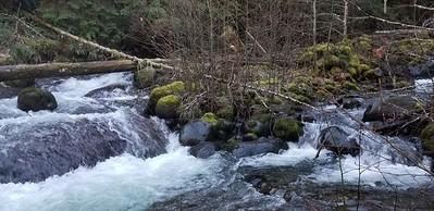 Music Creek near where it empties into Fish Creek