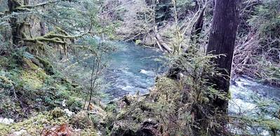 Neat hole along Fish Creek