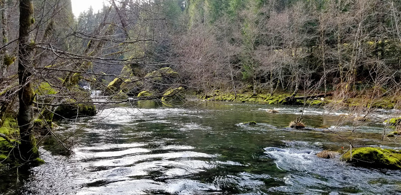 Looking south up the Collowash river from where old Bagby Trail meets it - somewhere on those rocks is where the old bridge used to be