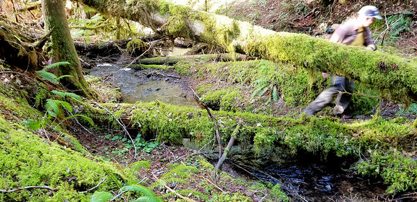 Slide creek where the old Bagby trail crosses it.