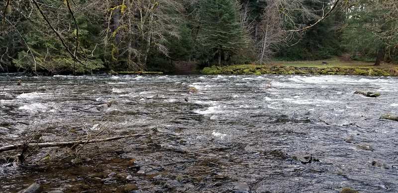 Looking South to the trail ford on the other side of the Clackamas river - the river is wide here so is shallower - I guess it makes sense for this to be the ford spot