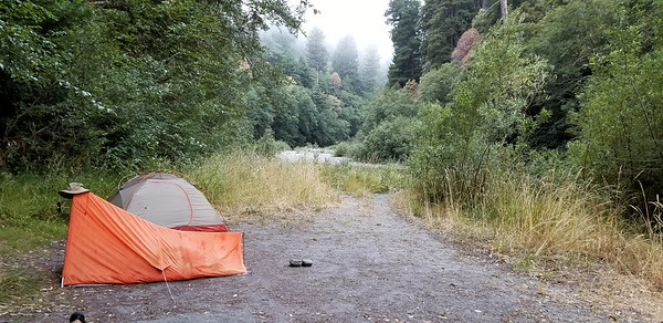 Our first night campsite on Redwood creek