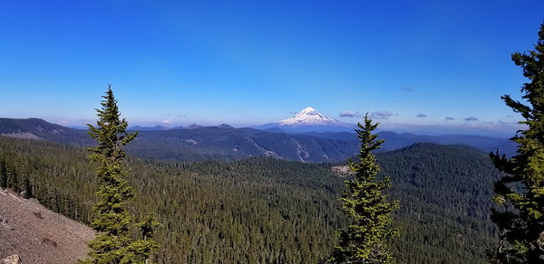 Looking north to Mt Hood